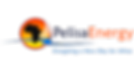 Pelisa Logo Final A.png