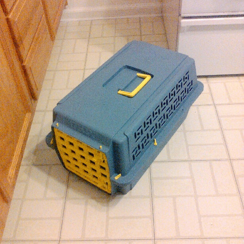 """Small Animal Carrier - 23"""" x 14"""" x 12"""" ($5)"""