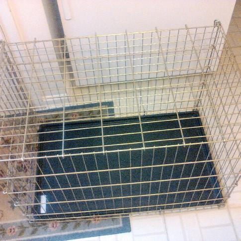 "Dog Crate 36"" x 21.5"" x 24"" ($5)"