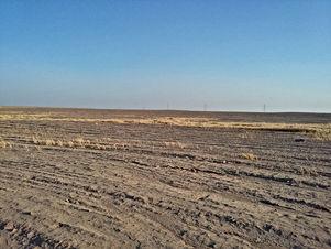 ارض للبيع في ابو الحصاني (مساحة 20 دنم