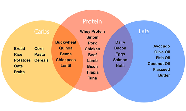 Protein (IT WILL NOT MAKE YOU BULKY!)