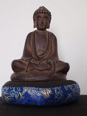 Introduction à Vipassana | La Pousse de Riz