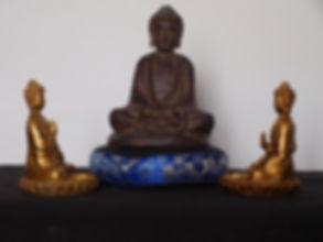 Les trois caractéristiques - Méditation La Pousse de Riz Lyon