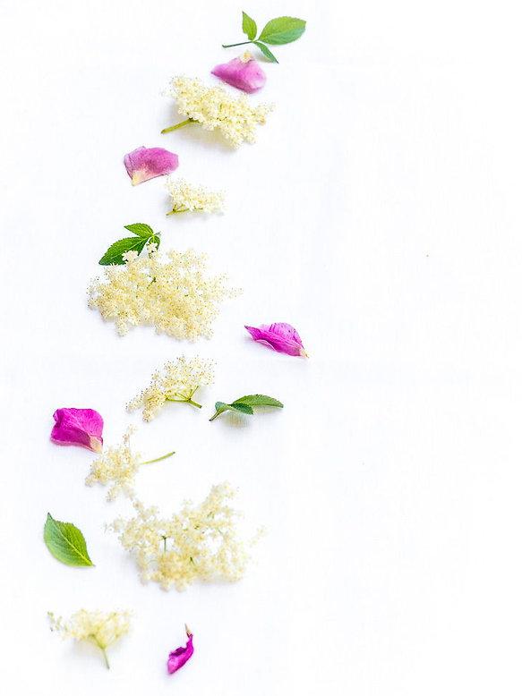 fleurs-de-sureau-et-rose_edited.jpg