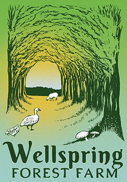 wellspring-logo-colors-spring5-04-20-18.