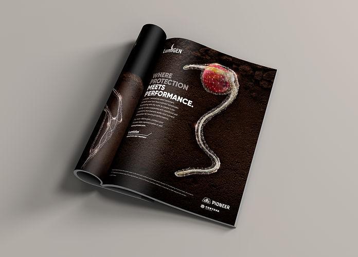 Print-ad-2.jpg
