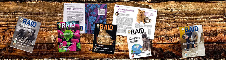 RAID_collage_tidning1.jpg
