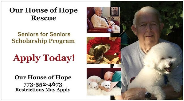 Seniors for Seniors Program  Front.JPG