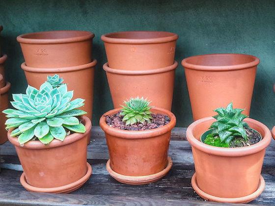 Small Terracotta Planters