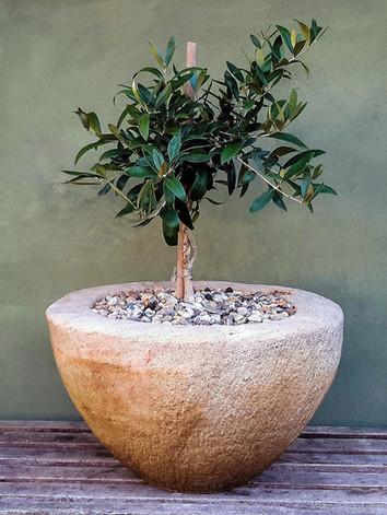 Limestone Bowl Planter