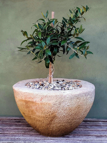 Limestone Bowl Planter