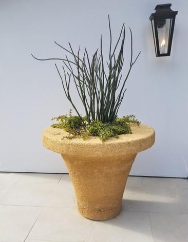 Stone Funnel Planter