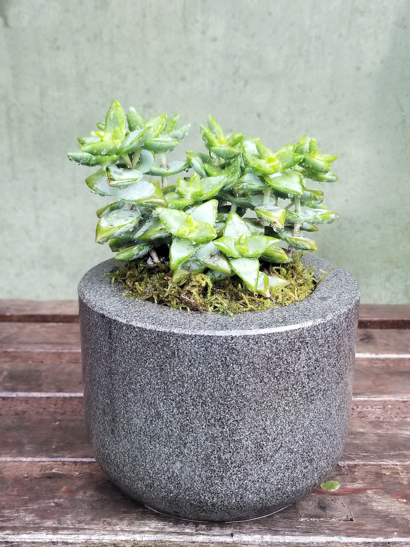 Honed Basalt Planter