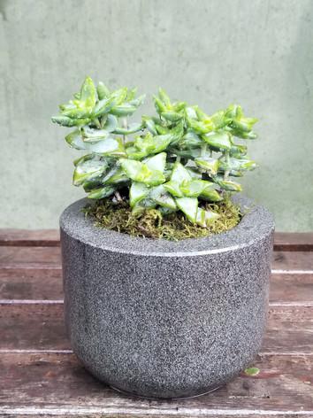 Honed Basalt Planter