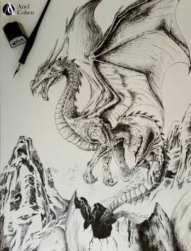 07-דרקון.jpg
