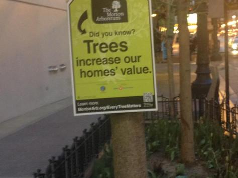 Arboretum's Guerilla and OOH Marketing Campaign
