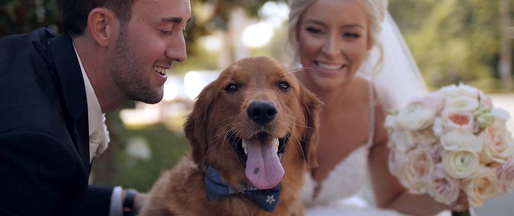 Wedding portrait with a dog