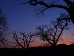 手宮公園の夕空 Temiya park at dusk