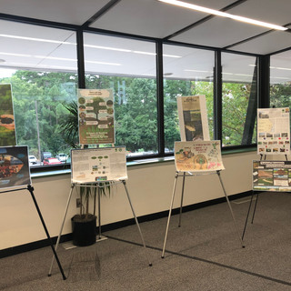 Student Posters