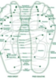 carte-de-reflexologie-du-pied-e135294044