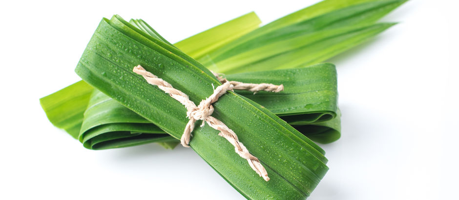 The Taste and Aroma of Pandan Leaf: Its Many Uses in Thailand