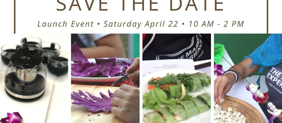 The Market Experience Launch Event on April 22
