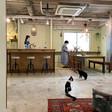 猫好きのためのシェアオフィス見学会のお知らせ