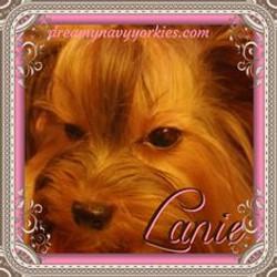 lanie2