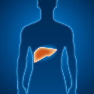 乙型肝炎的食療