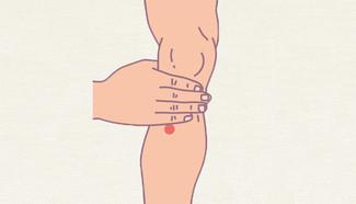 足三里的臨床運用