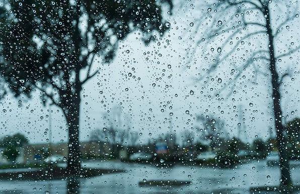中醫談濕氣