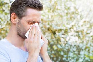 預防鼻敏感發作