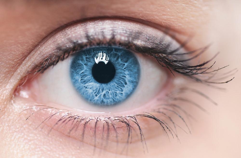 眼睛保健|中醫