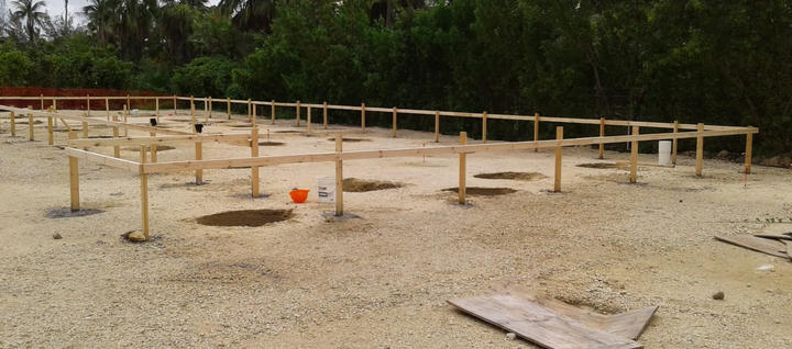 Hand cleaning 3'x 3' and placing rebar for concrete. . . . #RobsonConstruction #CaymanIslands #CaymanContractor #ConstructionLife #Foundation #Rebar #Concrete #Cleaning #WorkSite #WellnessGarden #SevenMileBeach