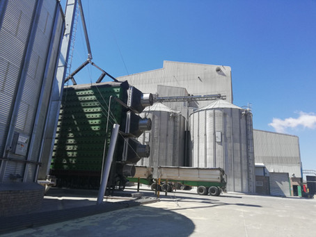 Top Hongdefa factory maize mill machine