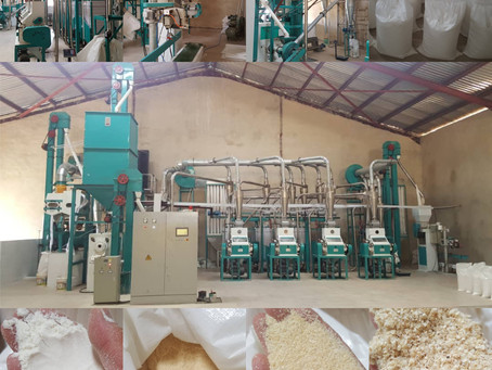 this week two new order of 20t maize mill machine from Africa!