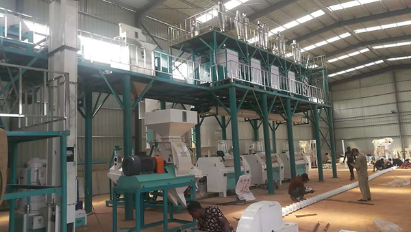 Nigeria 100t maize milling.png