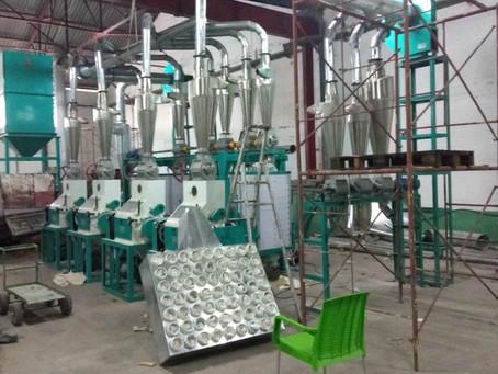 Congo installing 20t maize mill machine