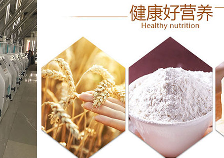 How is the effect of wheat flour milling technology on flour color?