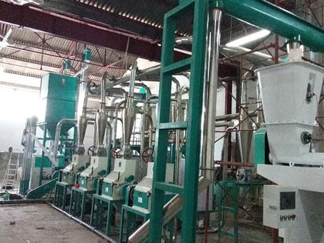 hongdefa installing 30t maize mill machine in Congo