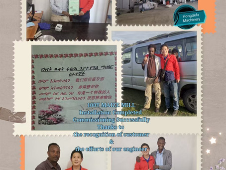 Great Feedback for 100Tons maize milling plant