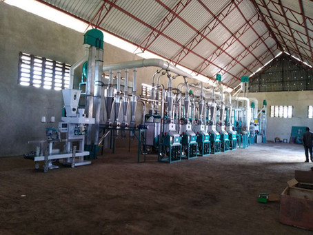 Tanzania Mbeya running 50t maize mill machine