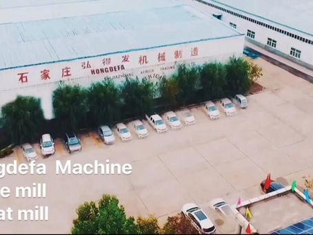 Hongdefa factory is professional maize mill machine and wheat flour mill machine supplier