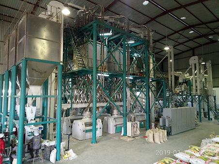 maize mill plant.jpg
