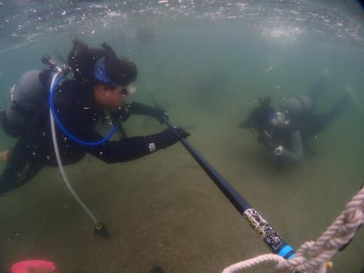 初めての海 初めてのダイビング