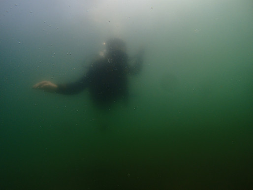 週末は大分でダイビング
