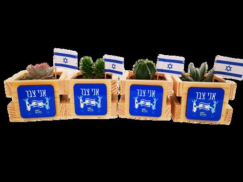 מתנות ליום העצמאות- אני צבר - עציץ ישראלי
