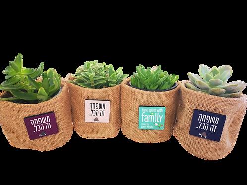 משפחה זה הכל - סדרת מוצרים משפחתית- עציצים עם מסר
