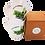 Thumbnail: GO GREEN ספל קקטוסים - סדרת