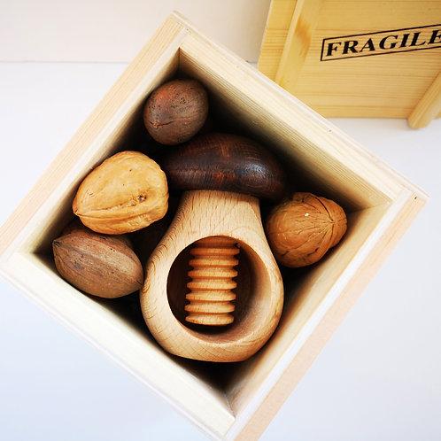 מפצח אגוזים ואגוזים במיכל או סלסלה